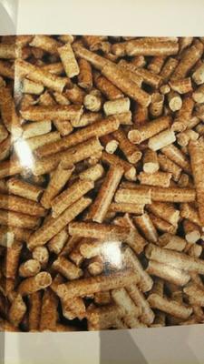 黑龙江绥化稻壳 常年出售稻壳,稻壳颗粒,有大车车队