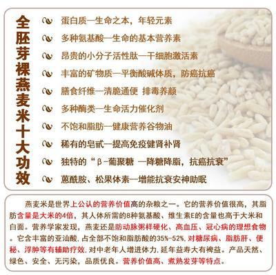 山西太原裸燕麦 山西特产高天古道有机杂粮纯天然裸粟米1盒12包