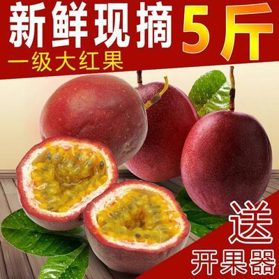 这是一张关于紫香一号百香果 50 - 60克 紫香一号百香果50-80克(5斤包邮)的产品图片
