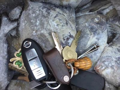 广西北海黑鲳 野生 0.5公斤以下