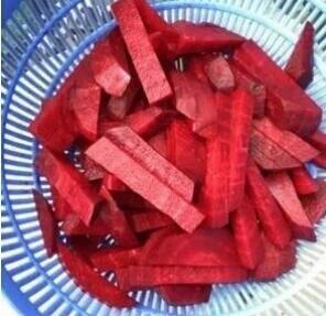江苏徐州食用甜菜 20~25cm