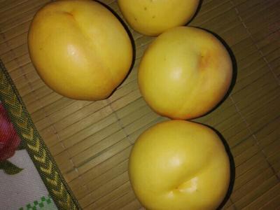 河北秦皇岛黄油桃 3两以上 60mm以上