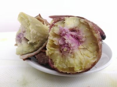 湖南永州一点红红薯 3两以上 红皮