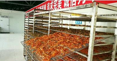 江西赣州烤虾干 6-12个月