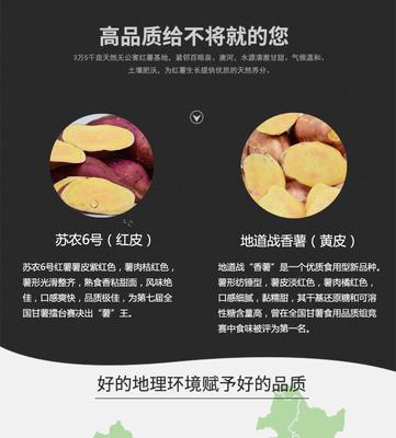 河北保定红薯 3两以上 红皮 5斤精装