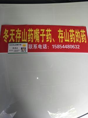山东潍坊悬浮剂 悬浮剂 瓶装