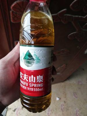 安徽阜阳黄秋葵初榨油