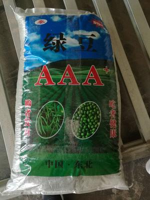 内蒙古赤峰小明绿豆 袋装 1等品