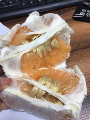 这是一张关于黄金蜜柚苗的产品图片