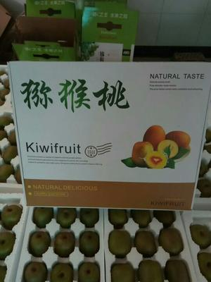 四川成都红心猕猴桃 70~90克 5,3斤坏果包赔 全国包邮 一件代发
