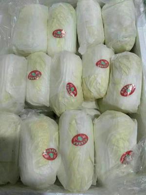 江苏省徐州市铜山区高山娃娃菜 7~10两