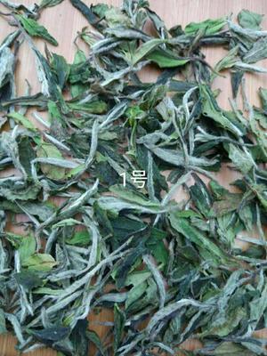 这是一张关于白牡丹茶 盒装的产品图片
