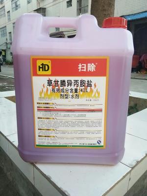 广西南宁草甘膦 水剂 桶装 41%草甘膦异丙铵盐除草剂20公斤
