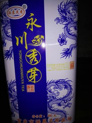 重庆绿茶 罐装