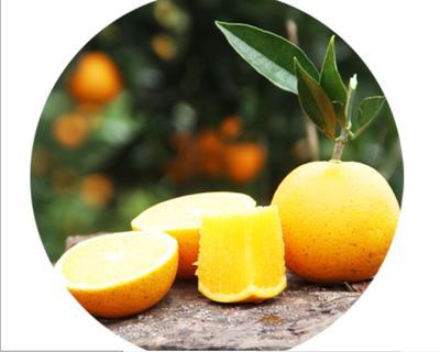 这是一张关于冰糖橙 65 - 70mm 4两以下的产品图片