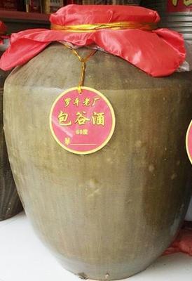 云南昭通包谷酒