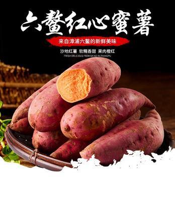 这是一张关于六鳌地瓜 红皮 3~8两的产品图片