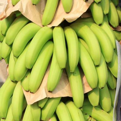 广东广州广东香蕉1号 40斤以下 七成熟 8斤装