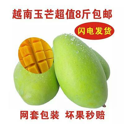 这是一张关于芒果 7两以上 8斤包邮31.9元的产品图片