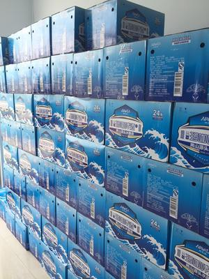 江苏盐城啤酒 10度以下 1年以下