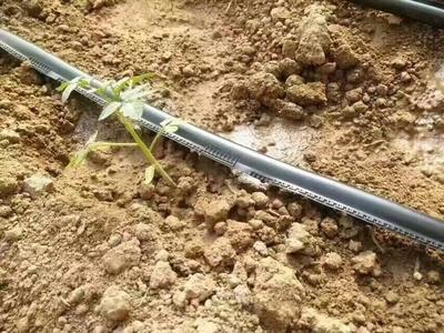 山东菏泽滴灌设备 农用工具 滴灌带接头