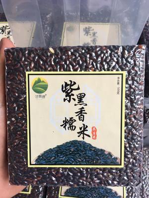 广西柳州糯米 高山冷水米