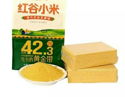 天津红谷米