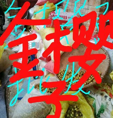 贵州黔东金樱子