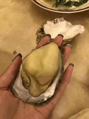 山东德州乳山牡蛎 野生 3-5只/公斤