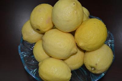 四川宜宾尤力克柠檬 3.3 - 4.5两 (有机认证)