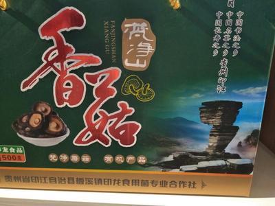 这是一张关于花菇干 1年以上 礼盒装的产品图片