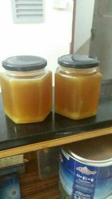 这是一张关于野生蜂蜜 桶装 2年 100%的产品图片