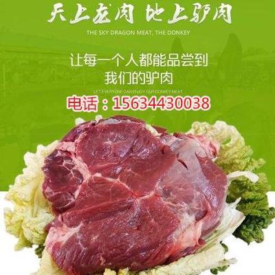 山东菏泽猪肉 生肉