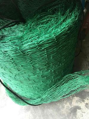 广西玉林防鸟网
