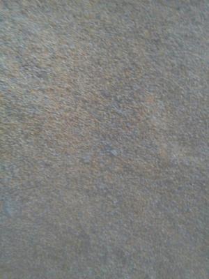 这是一张关于玉米湿粮 毛货 霉变>2%的产品图片