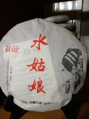 云南临沧新工艺白茶 盒装