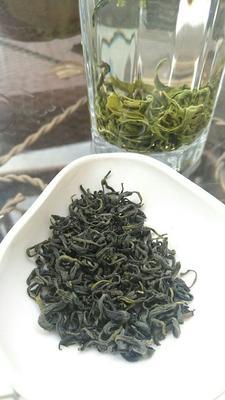 贵州遵义贵州绿茶 罐装