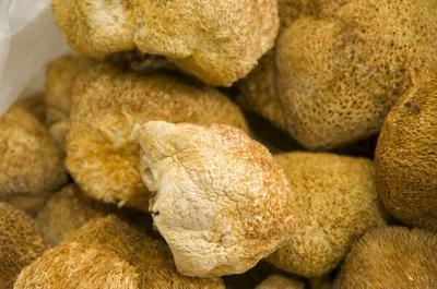 山东菏泽野生干猴头菇 散装 半年
