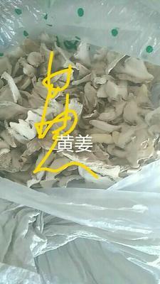江西宜春小黄姜干姜片 24个月以上 袋装