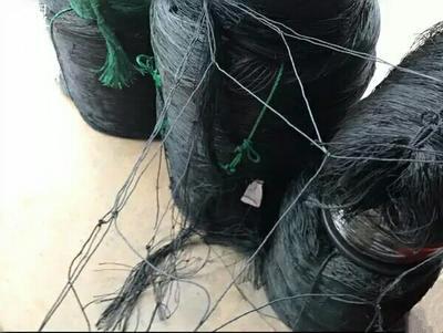 广西玉林爬藤网 百香果专用爬藤网,大棚托膜网