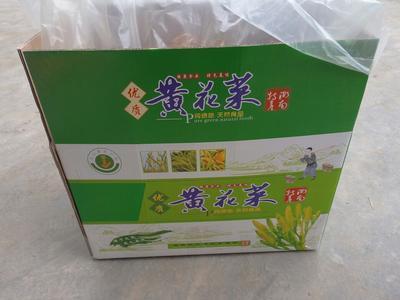 湖南衡阳聚福黄花 袋装 特级