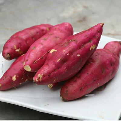 这是一张关于黄心红薯 1~3两 红皮的产品图片