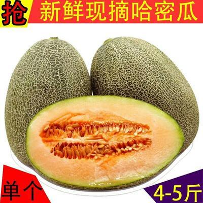 这是一张关于网纹瓜 3斤以上 5斤22.9元包邮包售后的产品图片