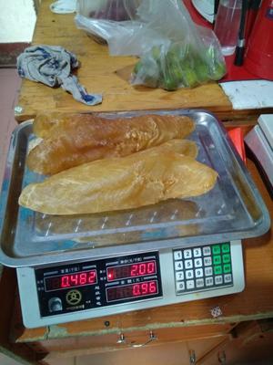 山东威海鱿鱼