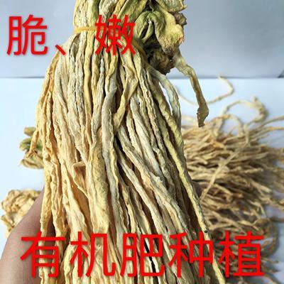 湖南衡阳干萝卜 6-12个月 萝卜条