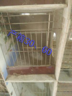 安徽宿州埇桥区兔笼
