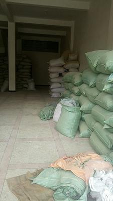 云南曲靖低硫干姜片 袋装 24个月以上