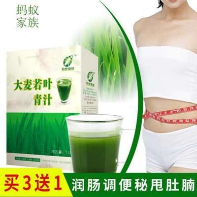 江苏徐州大麦青汁粉 12-18个月