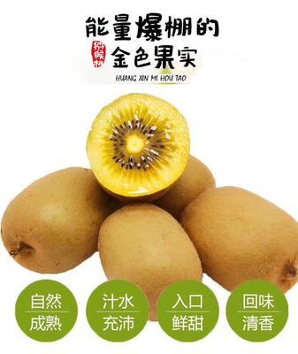四川成都金艳猕猴桃 70~90克