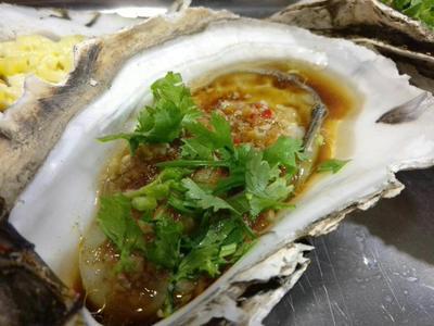 广东广州湛江牡蛎 人工殖养 1-3只/公斤
